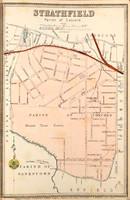 Strathfield Suburban Map