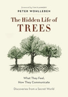 Hidden Life of Trees What They Feel, How