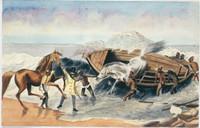 Landing horses from Australia, c.1834