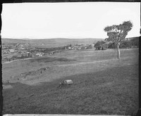 Panorama of Yass district, 1874 (Part 4 of 4)