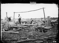 Pitsawing timber, Gulgong 1872