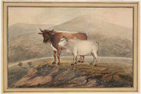 A Bengal cow and her calf, 1809
