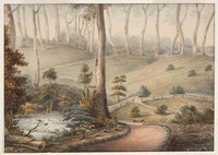 A view in Colonal Patersons garden Yorkton, 1808