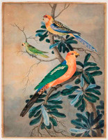 King parrot, eastern rosella and musk lorikeet, c.1820