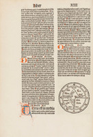 Liber ethymologiarum Isidori Hyspalensis, 1489
