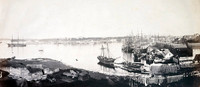 Campbell's Wharf and Sydney Cove from Dawes Point, 1854