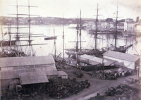 Town's Wharf (Millers Point) & North Shore, c.1875
