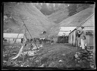 (Macpherson) male w. camera & tripod photographing whale processing 'try' works near mountainous valley – poss. Norfolk Island.