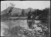 Group of four people in horse drawn cart crossing creek w. mountains behind – poss. Burragorang Valley, NSW.
