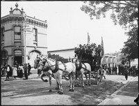 Horse-drawn omnibus 'HARGRAVE ST TO MACQUARIE PLACE' on Oxford St at Paddington.