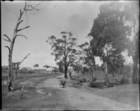 Rural scene, with man driving horse-drawn cart on dirt road.