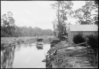 Motor boat on River at Woy Woy, with man at helm testing depth of channel, timber stockpiles and shed on shore.
