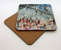 Swimming Enclosure Coaster