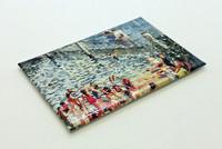 Swimming Enclosure Fridge Magnet
