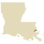 New Orleans Antique Maps Icon