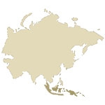 Indonesia Antique Maps Icon