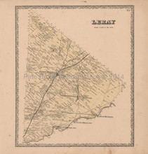 Leray New York Vintage Map Beers 1864