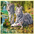 White Tiger Clan Animal Themed Maxi Wooden Jigsaw Puzzle 250 Pieces