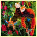 Red Pandas Animal Themed Majestic Wooden Jigsaw Puzzle 1500 Pieces