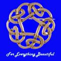 Celtic Pentagon Open Knotwork Bronze Brooch