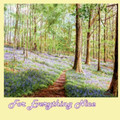 Bluebells Brathay Woods Nature Themed Mega Wooden Jigsaw Puzzle 500 Pieces