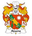 Adame Spanish Coat of Arms Print Adame Spanish Family Crest Print