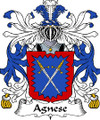 Agnese Italian Coat of Arms Large Print Agnese Italian Family Crest
