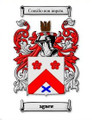 Agnew Coat of Arms Surname Large Print Agnew Family Crest