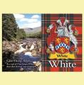 White  Coat of Arms Scottish Family Name Fridge Magnets Set of 4