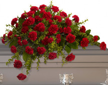 Small Red Carnation Casket Spray from Sympathy Flower Shop. This classic half size casket spray of traditional red carnations makes a striking and small, but dignified statement. Red carnations and miniature pixie carnations are accented by fresh greenery arrive in a lovely funeral spray for the casket. SKU SYM802