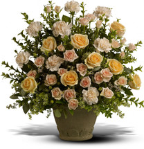 Rose Remembrance from Sympathy Flower Shop. Fragrant display of peach roses, spray roses and carnations - accented with greenery, and displayed in a classic Grecian Garden urn. Your Houston funeral florist. SKU SYM410