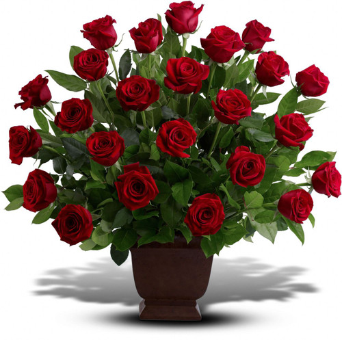 Red Rose Tribute by Sympathy Flower Shop. Two dozen red roses, accented by lemon leaf, are presented in a classic brown urn. Your Houston funeral florist. SKU  SYM413