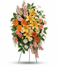 Always Treasured Orange Standing Spray from Sympathy Flower Shop.  This glorious spray includes Asiatic lilies, orange gerberas, orange carnations, peach stock and white cushion spray chrysanthemums, accented with flat cedar, leather leaf fern and lemon leaf. Delivered on a wire funeral easel. South Houston funeral flower delivery. SKU SYM613