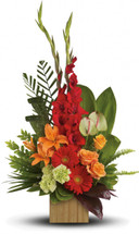 Loving Companion Sympathy Bouquet by Sympathy Flower Shop. A reminder of the joy of life, this stunning arrangement of orange and red floral favorites in a stylish bamboo cube is a gift that will be loved - and remembered. SKU SYM440
