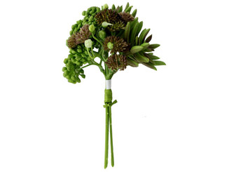 30004259 DARICE SUCCULENT BUNDLE 7 GREEN BROWN