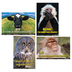 POSTER PALS FUN PHOTO POSTERS SET #5 FRENCH