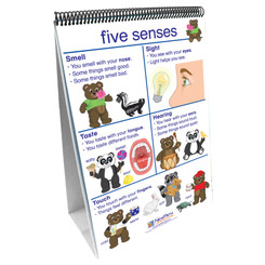 NEWPATH LEARNING FLIP CHARTS ALL ABOUT ME EARLY
