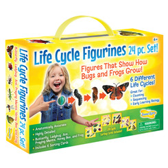 INSECT LORE LIFE CYCLE FIGURINES 24PC SET