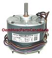 Trane MOT03125 Condenser Fan Motor