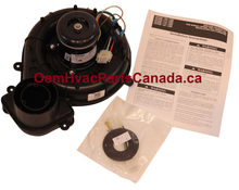Carrier 337938-774-CBP Draft Inducer Motor