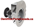 Goodman Fasco Draft, Inducer Motor A157, B2959005, RFB185