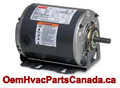 Carrier/Bryant/Payne Belt Drive Motor 1/3 HP, 115V, 1725 RPM