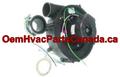 ICP Heil Tempstar Furnace Exhaust Inducer Motor 1172823