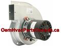 Rotom Olsen Inducer Motor FB-RFB111