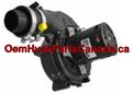 Genuine York Draft Inducer Motor 32434558000