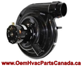 Genuine ICP Draft Inducer Motor 1011350