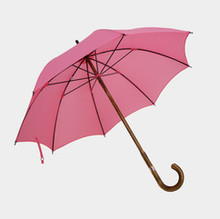 Ladies' Maple Handcrafted Umbrella