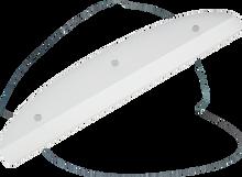 Powell - Tailbone 8.0 White