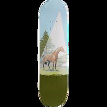 SKATE MENTAL - Mental Motta Horse / Books Deck-8.12 - Skateboard Deck