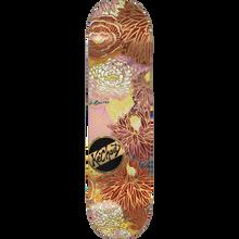Darkstar - K.johnson Gold Lines Deck-8.12 R7 - Skateboard Deck